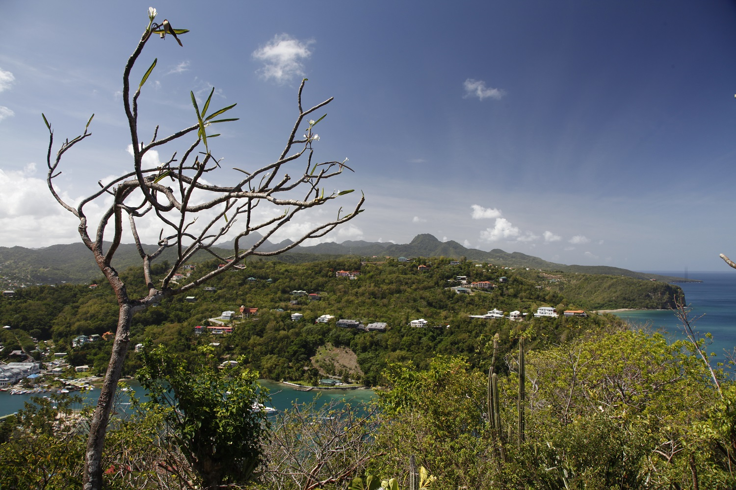 View Marigot Bay